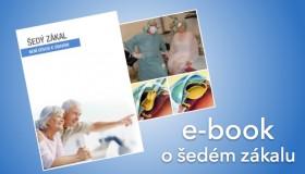 Stáhněte si zdarma e-book o šedém zákalu